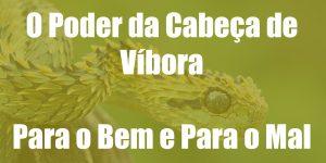 O Poder da Cabeça de Víbora - Para o Bem e Para o Mal